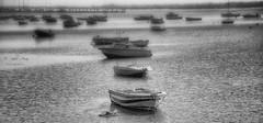 (336/18) Domingo por la tarde (Pablo Arias) Tags: pabloarias photoshop photomatix capturenxd españabn blancoynegro monocromático barca bote agua mar océano atlántico elrompido huelva andalucía