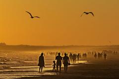 Time Spectra (Up, front, rear) (Ignacio M. Jiménez) Tags: timespectra ignaciomjiménez playa beach arena sand mar sea gaviotas seagull sunset atardecer seascape puntaumbria huelva andalucia andalusia españa spain gente people