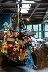 average amount of found debris... (1/2) (steveleenow) Tags: vancouver vancouverbc vancouverbccanada vancouverbritishcolumbia vancouverbritishcolumbiacanada britishcolumbia canada vancouveraquarium aquarium plastic plastics waste junk trash