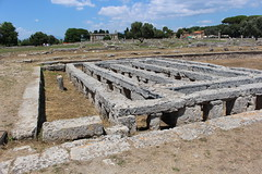 IMG_4938 Paestum (drayy) Tags: paestum rome roman ancient magnagraecia temple town italy europe campania greek
