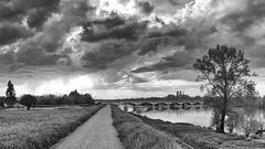 La Loire à Saint Jean le Blanc N&B (Livith Muse) Tags: arbre rivière fleuve loire orléans cathédrale nuage ciel eau chemin rayon pont panorama paysage nb bw blackandwhite noiretblanc panachallenge smartphone samsung galaxys7 ngc