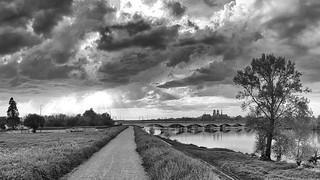 La Loire à Saint Jean le Blanc N&B