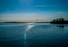 Morning on the Sunshine Bridge (MJ6606) Tags: breathtakinglandscape view trees summer landscape nature water sky boat ocean clouds florida