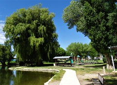 71818-05, The Estancia, New Mexico City PArk (skw9413) Tags: newmexico park trees walkway pond