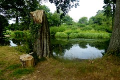 Fish Ponds, Colwall. (jenichesney57) Tags: