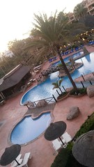 20180120_183642 (rugby#9) Tags: californiabeachresort fuengirola complex costadelsol poolloungers palmtree trees pool palmtrees santacruzsuites building bridge holiday poolside spain clublacosta sunloungers outdoor andalucia umbrellas sky hedge