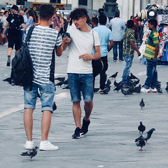 Amongst the Pigeons in St Mark's Square (FotoFling Scotland) Tags: venice italy pigeons flickr