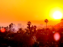 June Sunset (Robert Borden) Tags: losangeles la lalaland socal cali california street gold yellow orange canon canonphotography canonpowershot pointandshoot silhouette fromstevesdeck