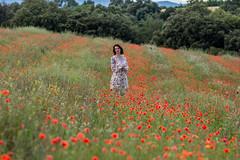 sans titre-99 (fafa des bawoaa) Tags: poppy nature campagne fleur blume flower coquelicot girl portrait