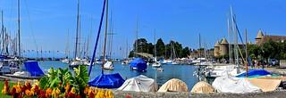 Le vieux port de Morges