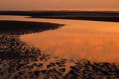 282658 (armagedd0n) Tags: coast coastal europe horizon landscape lowtide reflection red sunset water