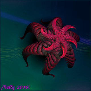 *Starfish...