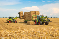 CLAAS Square Bales Team (martin_king.photo) Tags: harvest harvest2018 ernte 2018harvestseason summerwork powerfull martin king photo machines strong agricultural greatday great czechrepublic welovefarming agriculturalmachinery farm workday working modernagriculture landwirtschaft martinkingphoto moisson machine machinery field huge big sky agriculture tschechische republik power dynastyphotography lukaskralphotocz day fans work place clouds blue yellow gold golden eos country lens rural camera outdoors outdoor claasteam team posing allclaaseverything bales squarebales summer claastorion torion535 claastorion535 new neu claasatos pronar