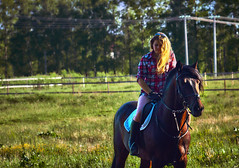 Young blonde woman in a plaid shirt takes a walk with his horse. Summer sunny evening. (afefelov68) Tags: horse female woman girl animal beautiful young equestrian stallion nature caucasian outdoor happy beauty equine park person brown summer riding training blond head bridle cute people portrait pretty rider active grooming admiration adoration affectionate animals communication delightful dressage elegance hobbies hug livestock pets positive purebred skills snout tame together cowgirl ulyanovsk russia