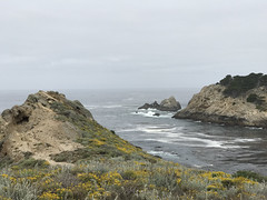 20180618_185830323_iOS (jimward85) Tags: pointlobos carmelbythesea montereybay california