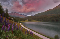 Twiligt at Lake St. Moritz, Engadin, Switzerland (swissukue) Tags: switzerland schweiz engadin stmoritz sunset sonya9 emount graubünden eveninglight