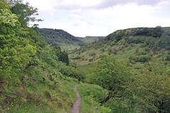32372 (benbobjr) Tags: england english uk unitedkingdom gb greatbritain britain british northyorkshire yorkshire ryedale northridingofyorkshire northyorkmoors nationalpark moor moors