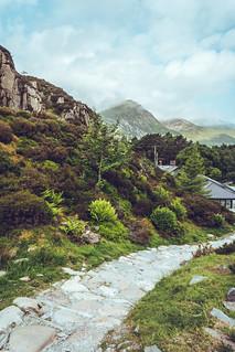 Vibrant Mountain Scene