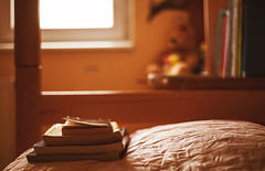Books on the Bed (dejankrsmanovic) Tags: lifestyle book bed sheet pillow room interior indoor home living dwelling style knowledge learn study teenager childhood furniture angle blur blurry scene calm ambiance restful peaceful domestic school homework learning concept conceptual archive library literature collection education educative reading