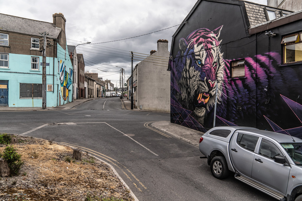 EXAMPLES OF STREET ART [URBAN CULTURE IN WATERFORD CITY]-142323