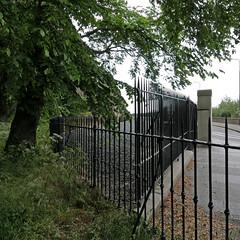 iron gate . . . (Jocawe) Tags: lumixdmclx100 iron gate availablelight square tree green black brown