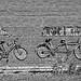 Bikes On The Barn