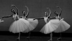 Ballet (PernilleLassen) Tags: ballet copenhagen pernillelassen bw art canon denmark
