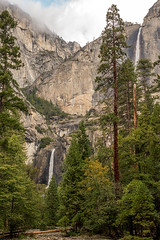 Yosemite (AdrienG.) Tags: yosemite national park parc valley vallée halfdome fall waterfall cascade foret forest californie california usa etats unis ameriques united states america アメリカ合衆国 sony rx100 iii mark m 3 ソニ