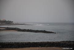 Playa de las Américas, Тенеріфе, Канарські острови  InterNetri  792