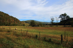Beginning of Autumn, Boxley Valley - Northwest Arkansas (danjdavis) Tags: boxleyvalley autumncolor fallcolor barn oldbarn fence arkansas