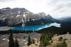 Peyto Lake (Walcher Franz) Tags: canada canadream jasper banff nationalpark alberta springbreak natur nature adventure can park parkcanada lake water glacier amazing bow valley yoho kootenay louise icefield parkway landscape