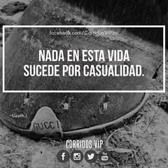Nada.! 🙊 . . . #corridosvip #teamcorridosvip #corridos #borrachos #tkt #fiesta #peda #ranchero #carrerasdecaballos #cuaco #mexico #regional #sinaloa #sonora #amigos #corridosybanda #corridosgram #corridoschingones #norteño #mexican #mexicanm (Corridos VIP) Tags: ifttt instagram corridos corridosvip quotes frasesvip