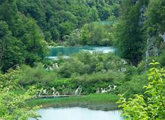 Plitvice Lakes (Kaeko) Tags: plitvičkajezera plitvicka plitvicelakes plitvice nationalpark park croatia europe vacation holiday travel nature waterfall lake lakes water trees landscape grass forest tree river
