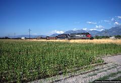 The Corn Fields of Salt Lake County (jamesbelmont) Tags: southernpacific mpi riverton corn emd sd40t2 sd40m2 manifest mrodv drgw unionpacific riogrande