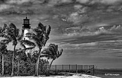 Cape Florida Light (pandt) Tags: lighthouse keybiscayne light billbaggs capeflorida beach sky clouds dark storm wind windy water ocean sea coast monochrome bw blackandwhite canon eos slr 7d flickr