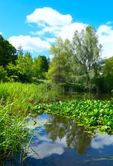 Jardín Botánico de Edimburgo, UK (eustoquio.molina) Tags: reflejo reflection jardín botánico botanic garden edinburgh edimburgo uk