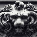 Tête de lion thumbnail