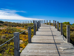 Portugal 2017-9041872 (myobb (David Lopes)) Tags: 2017 allrightsreserved europe nazare portugal absence bluesky boardwalk copyrighted diminishingperspective idylic infinity landscape nature nopeople outdoor plant rope scenicnature seascape sky tourism touristattraction tranquilscene tranquilty traveldestination vacation vanishingpoint ©2017davidlopes