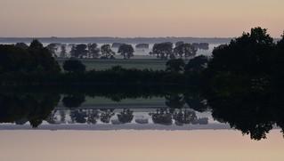 Am frühen Morgen - gespiegelter Blick über das Treene-Tal; Bergenhusen, Stapelholm (61a) (2)