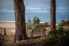 The viewing seat (Gordon-Shukwit) Tags: aptos california landscape santacruz summer