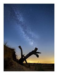 Starry sky on Kootwijkerzand (jos.pannekoek) Tags: stars milkyway melkweg d500 tokina1116mmf28 tokina gelderland kootwijk kootwijkerzand stuifduinen landschap