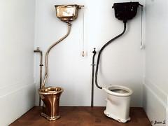 Choices (Jean S..) Tags: toilet museum expo exhibition subodhgupta monnaie paris june gold golden