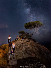 Flickeros de Ibiza Nocturna , buscando via lacteea ... (Anton Calpagiu) Tags: milkyway stars marte planets tree night view group ibiza nightscape