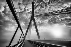 Niederrheinbrücke (GeorgKazrath) Tags: sw bw bridge brücke fog nebel sonnenaufgang sunrise wolken clouds wesel niederrhein lowerrhine