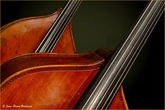 Violoncelle (Jean-Pierre Verduzier) Tags: violoncelle violon musique instrument artiste musicien cordes bois art scène