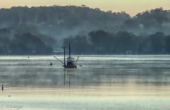 Repton dredge (Liketobe) Tags: scenary boat river armidale nsw australia