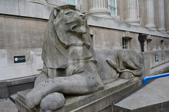 London, England, UK - British Museum (jrozwado) Tags: europe uk unitedkingdom england london museum britishmuseum history culture anthropology lion sculpture
