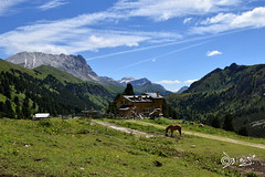 Val Duron - Italy (Biagio ( Ricordi )) Tags: valdifassa trentino italy montagna paesaggio nuvole dolomiti valduron cavalli verde panorama