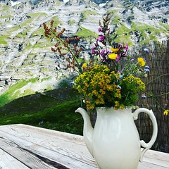 A Hiker's Rest (Rosmarie Voegtli) Tags: holz wood tisch table mountains porzellan vase iphone hiking flühalp leukerbad wallis switzerland pickacountry flowers bouquet ourdailychallenge odc