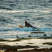 Surfer Paddles Out at Coal Oil Point